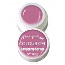 1-25402 Raspberry Sorbet, UV-LED gel colour, 5gr
