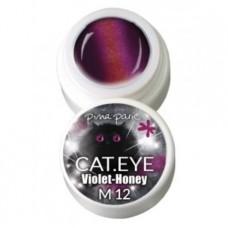 1-2712 Cat-eye Violet Honey, UV-LED gel colour, 5gr