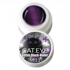 1-2713 Cat-eye Glitter Black Violet, UV-LED gel colour, 5gr